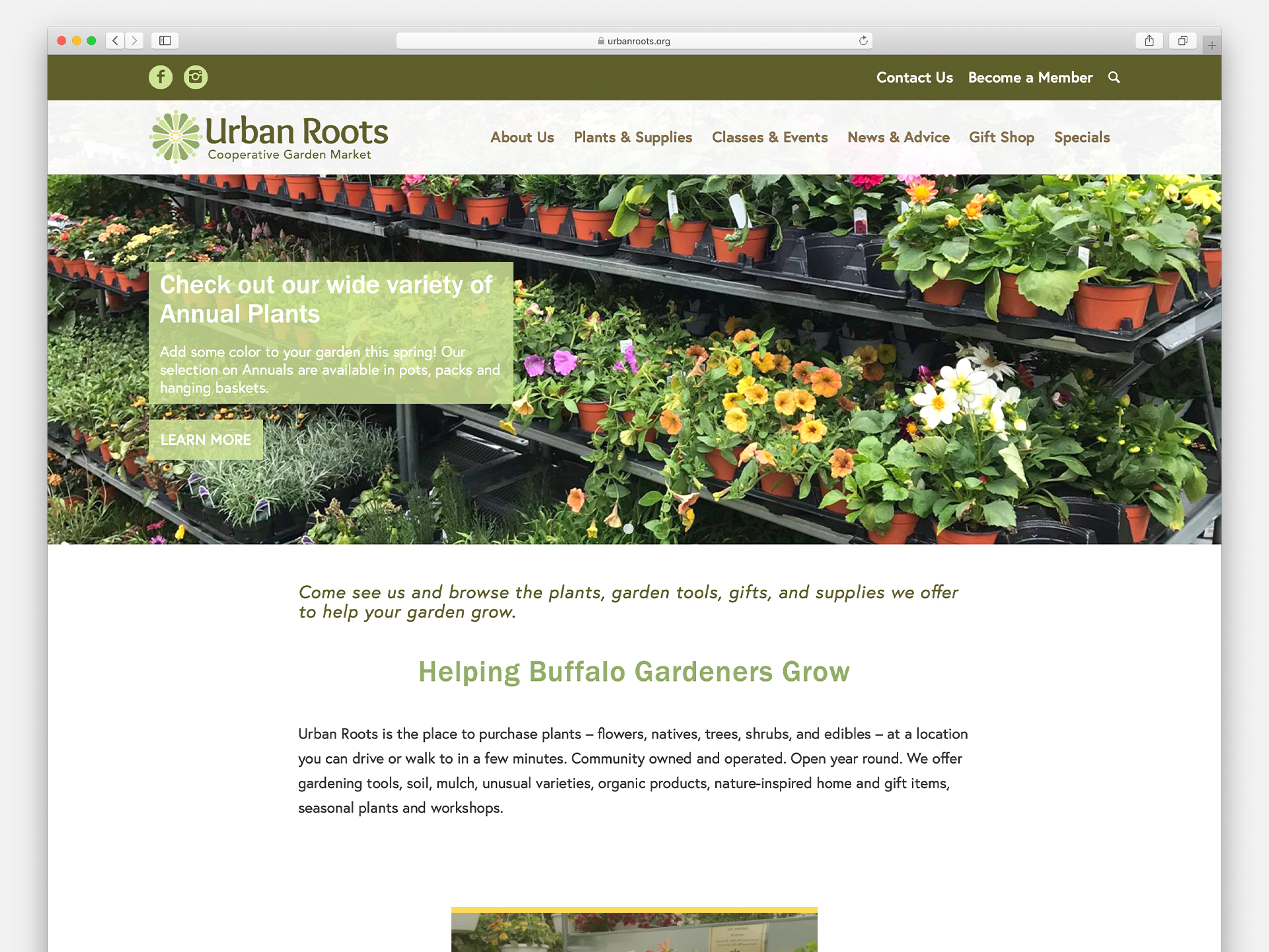 Custom Website Design, Mobile Responsive, Online Catalog