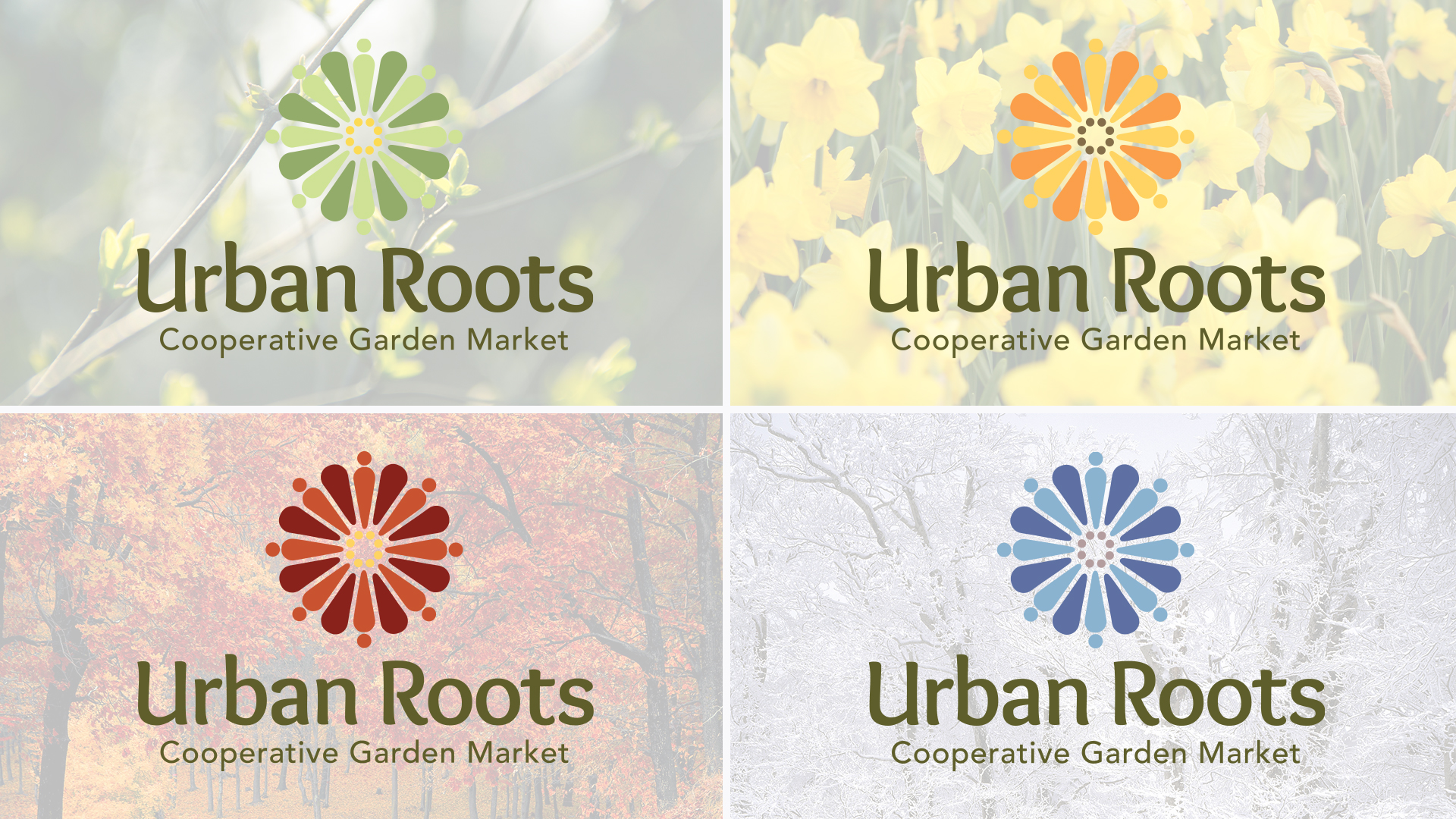 Logo design, seasonal, branding, brand development
