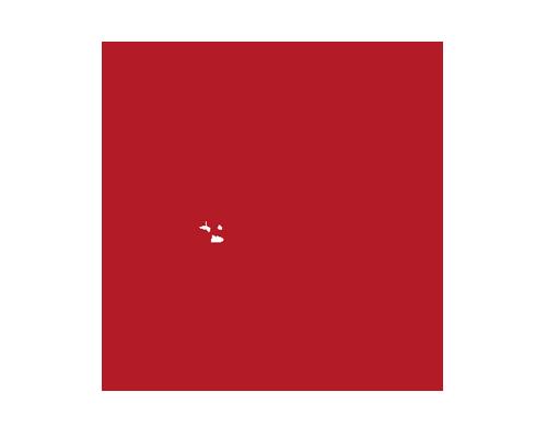 Flying Anvil Metalworks, Logo design, OtherWisz Creative