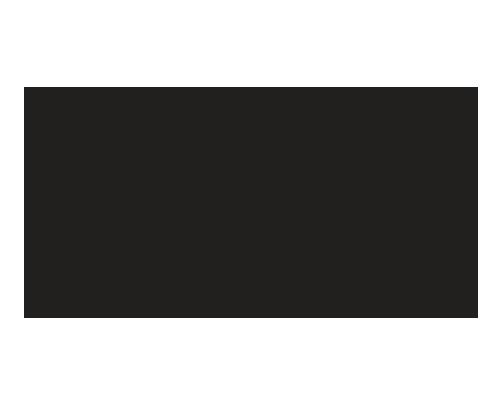 The Terrace at Delaware Park, Logo design, restaurant logo, Buffalo New York